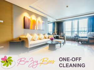 buzybees one off cleaning